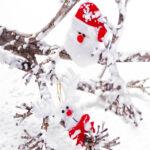 Kép 3/4 - Karácsonyi dísz szett (2 db) 145105 Szín Fehér