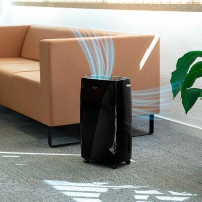 Párátlanító Cecotec BigDry 4000 Expert 2,5 L Fekete